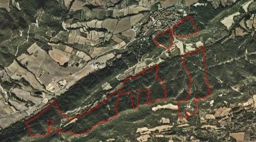 Indicat en vermell, l'àrea on es farà l'actuació