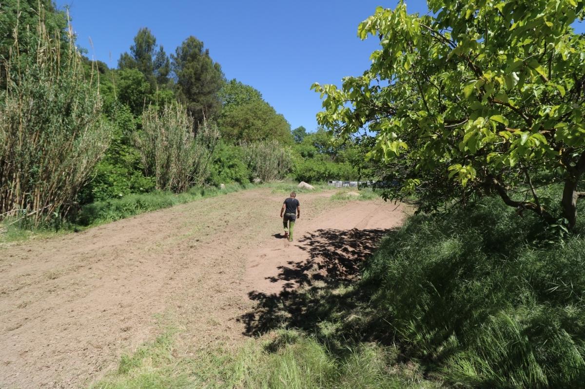 Una de les vuit zones de cultiu hortícola a Jorba