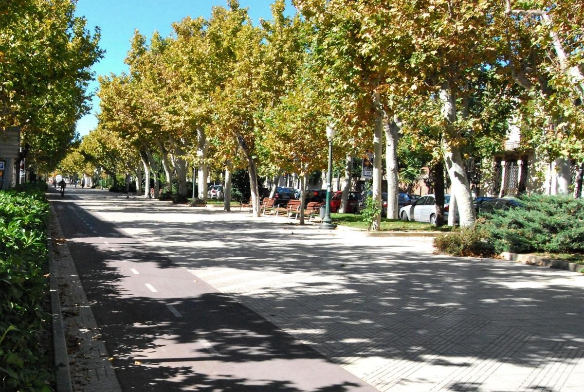 El Passeig Verdaguer, un dels punts amb més concentració d'arbres