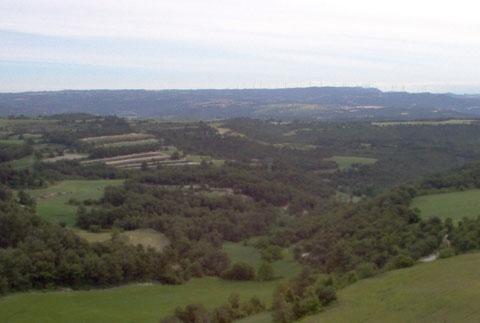 Boscos del terme municipal d'Argençola