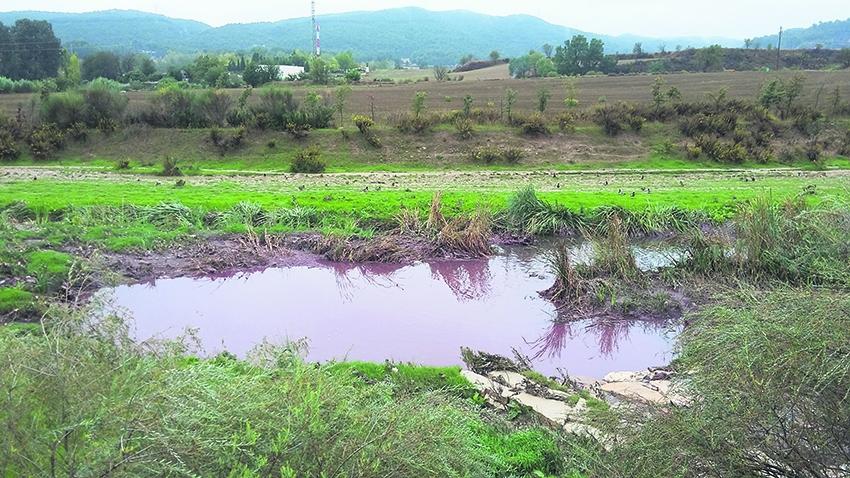 Contaminació de dijous 13 d'octubre a la sortida d'un col·lector (Foto: Júlia Solé Badal)