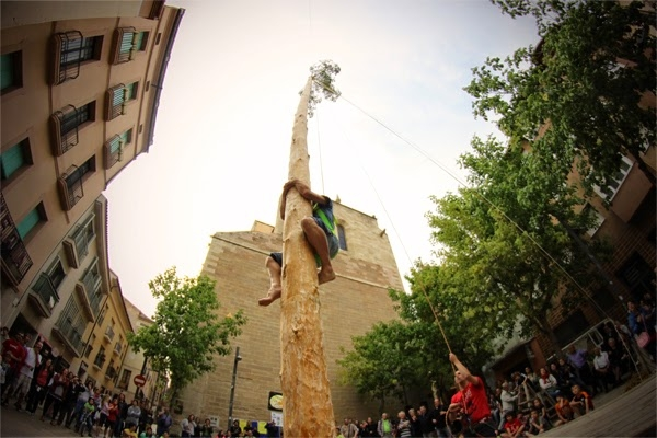 Un Moixiganguer grimpant a l'arbre FOTO: Pau Corcelles