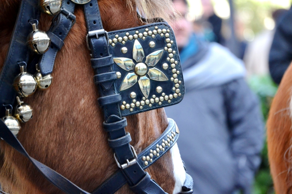 Els guarniments dels cavalls, part de l'encant dels Tres Tombs