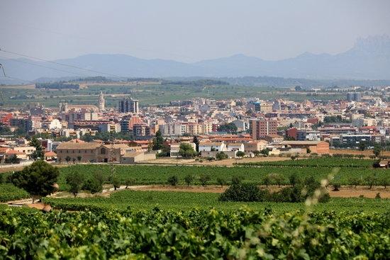Vista de Vilafranca del Penedès, una de les quatre capitals de la Vegueria