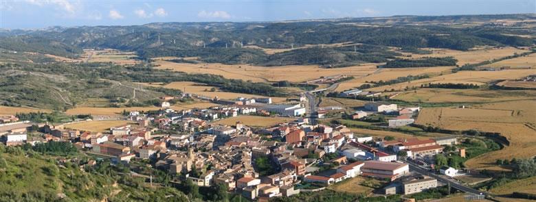 Els ajuntaments han signat el manifest al municipi de Torà