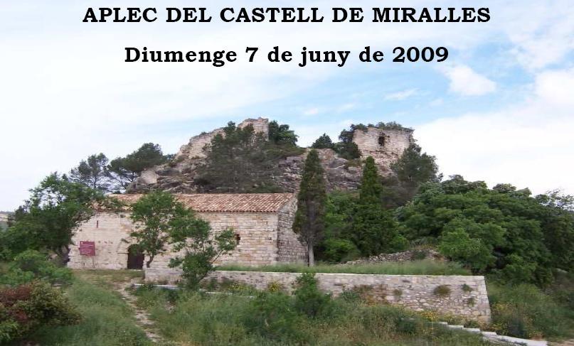 Aplec al Castell de Miralles