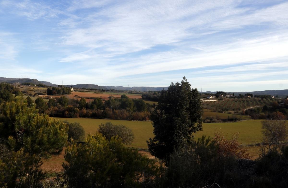 Panoràmica de la zona de Can Morera FOTO: ACN
