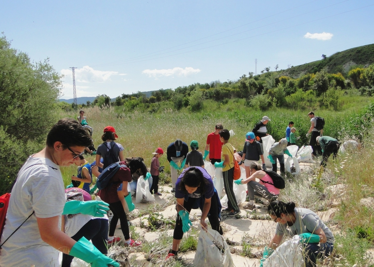 El 'Clean-Up' de 2017 a l'Anoia