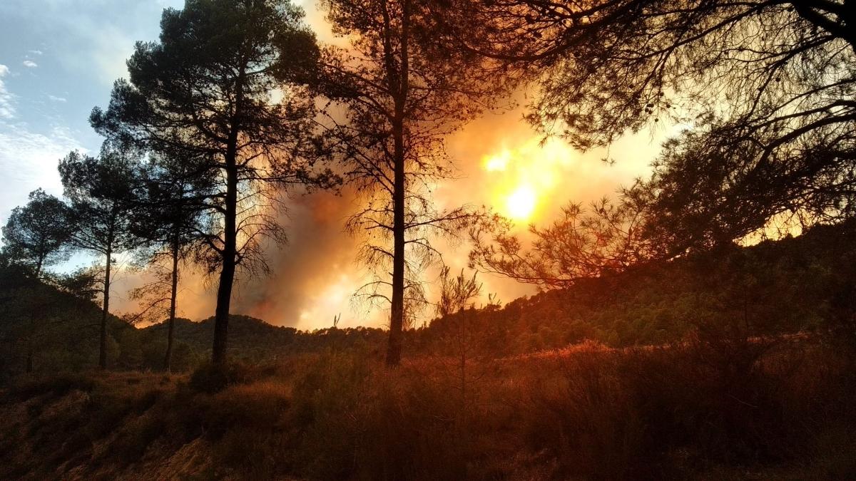 El foc a Miralles, estenent-se FOTO: Jordi B.