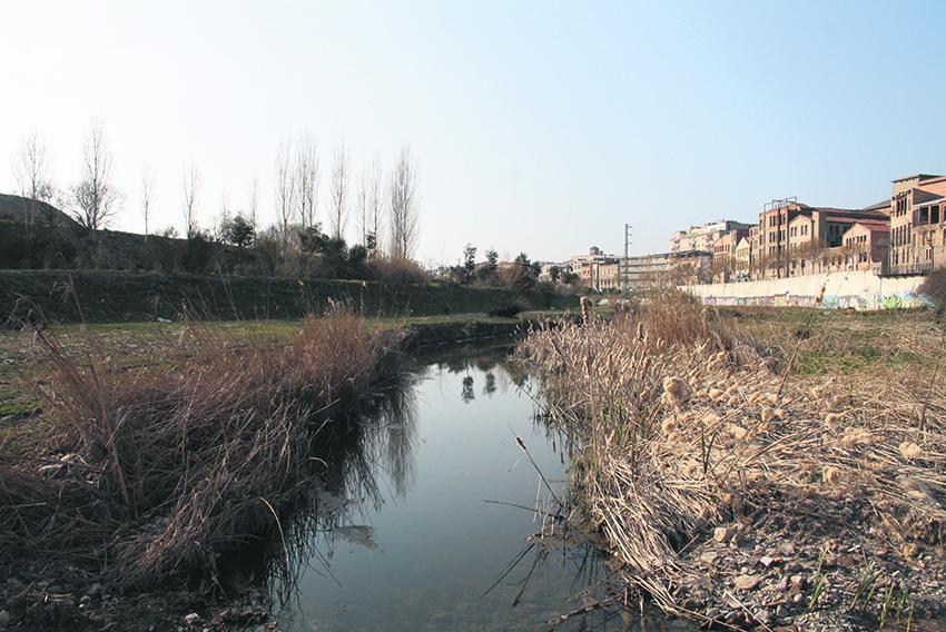 El riu Anoia a la zona del Rec d'Igualada. (Foto: Júlia Solé Badal)