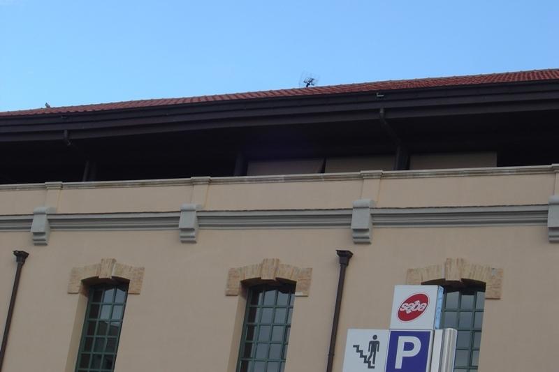Afectació a la biblioteca Central - foto: Nil Solé