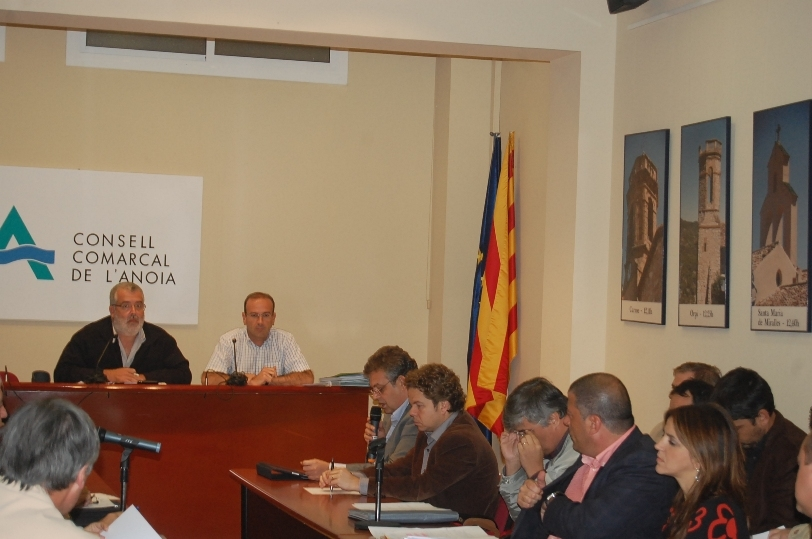 Ple del Consell Comarcal