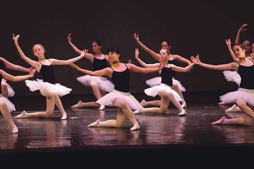 Mostra'm Dansa 2018 (Foto: Marc Vila)