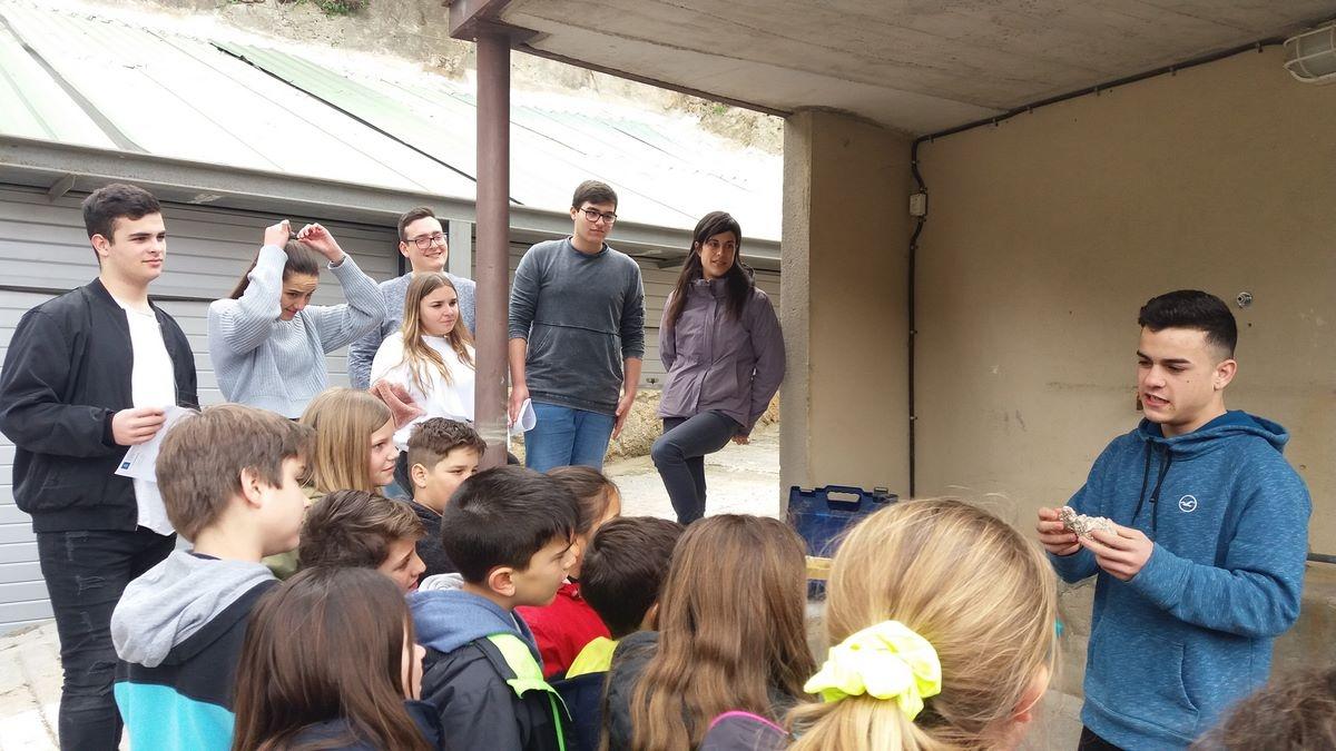 Una activitat del pla educatiu d'entorn vigent de Capellades