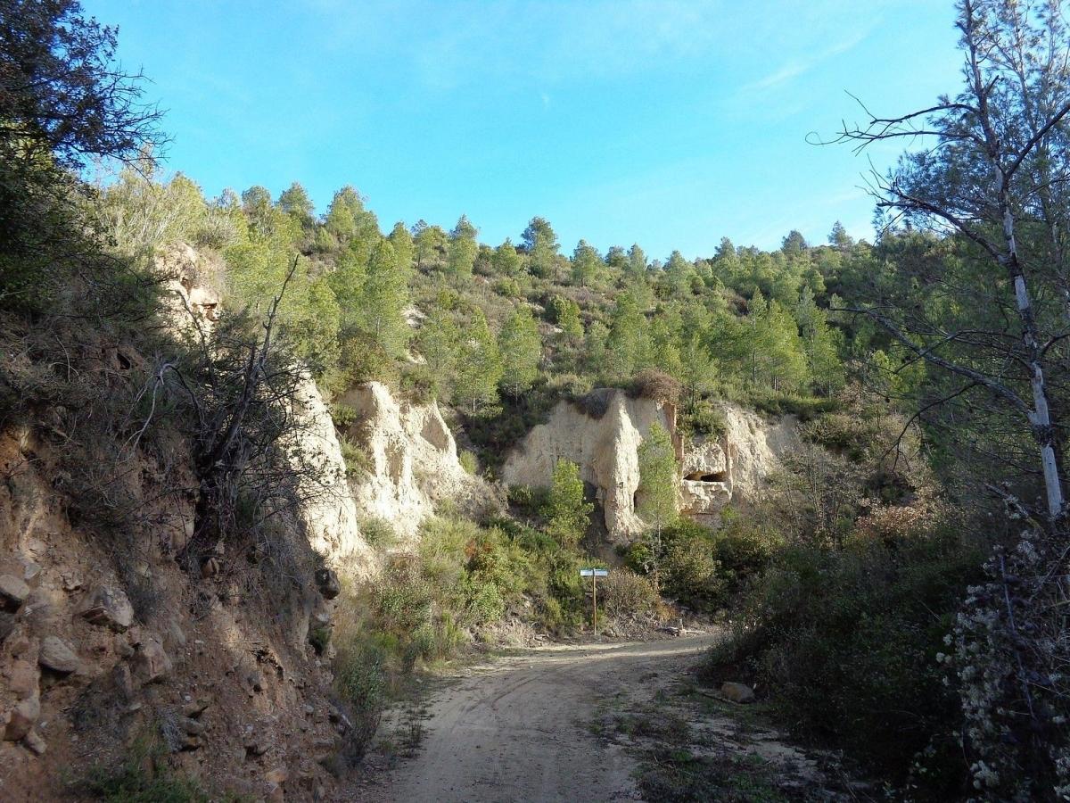 Barranc de les Marrinxes (Foto: UECANOIA)
