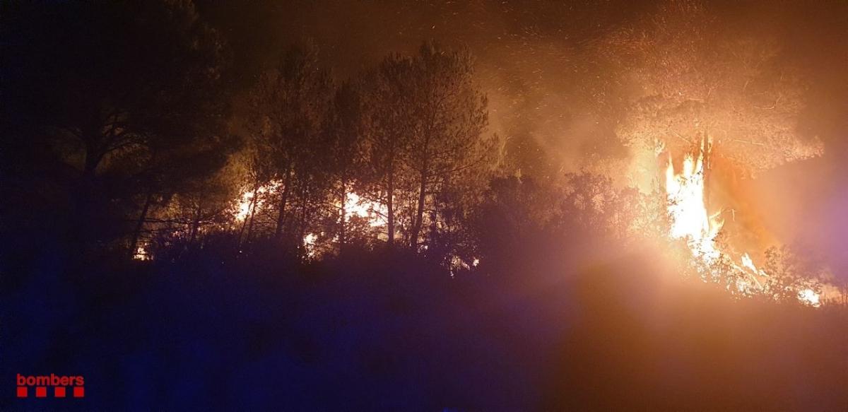 Els Bombers han aconseguit perimetrar el 80% del foc (Foto: Bombers)