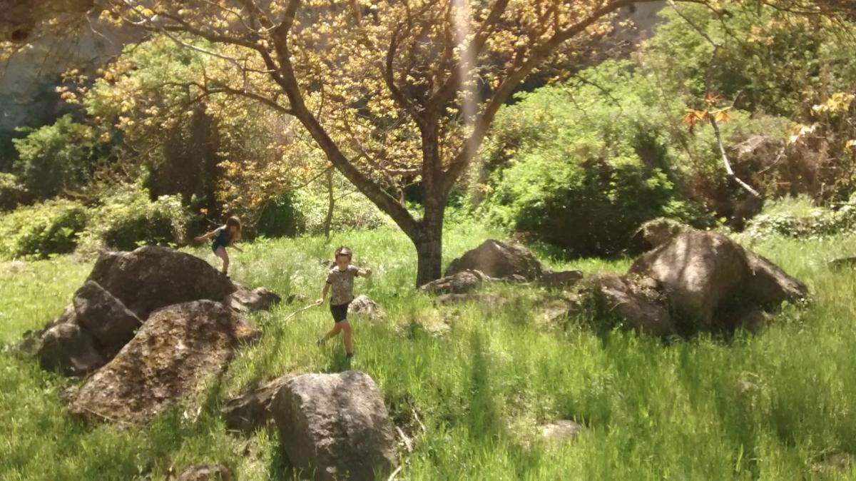 Els petits de la família de l'Enric, en una sortida al bosc