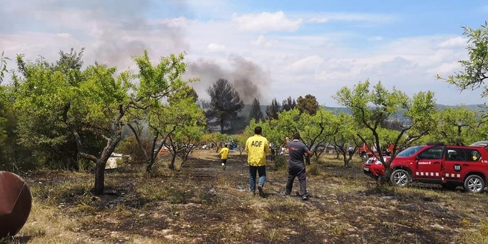 Voluntaris de l'ADF, a la zona cremada, junt a efectius dels Bombers FOTO: Ajt. Montbui