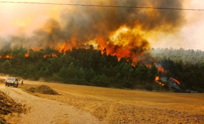 Una imatge de l'incendi a la zona bagenca foto: Marc Sellarès