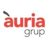 ÀURIA GRUP